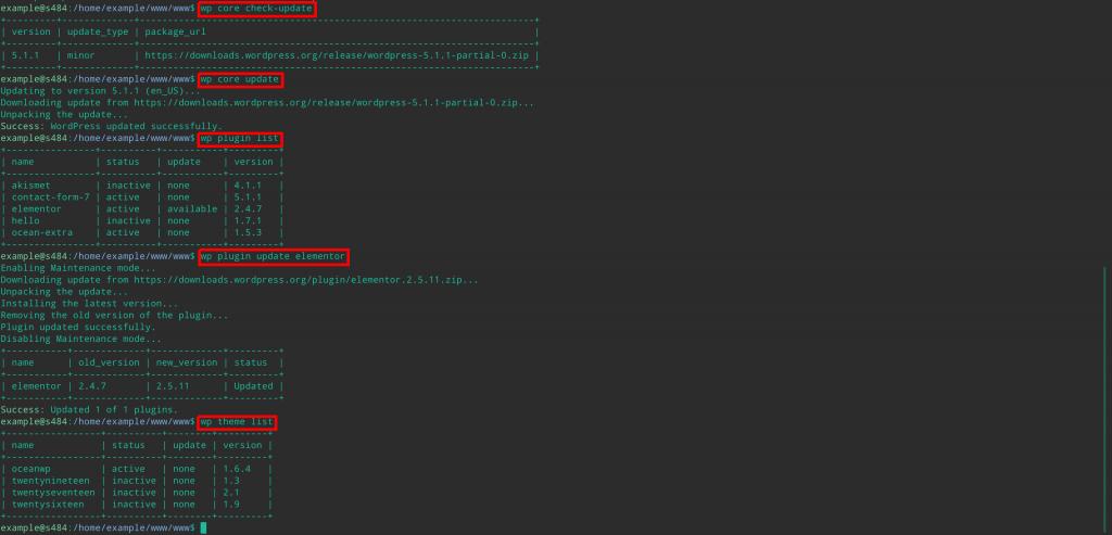 wordpress security updates wp-cli