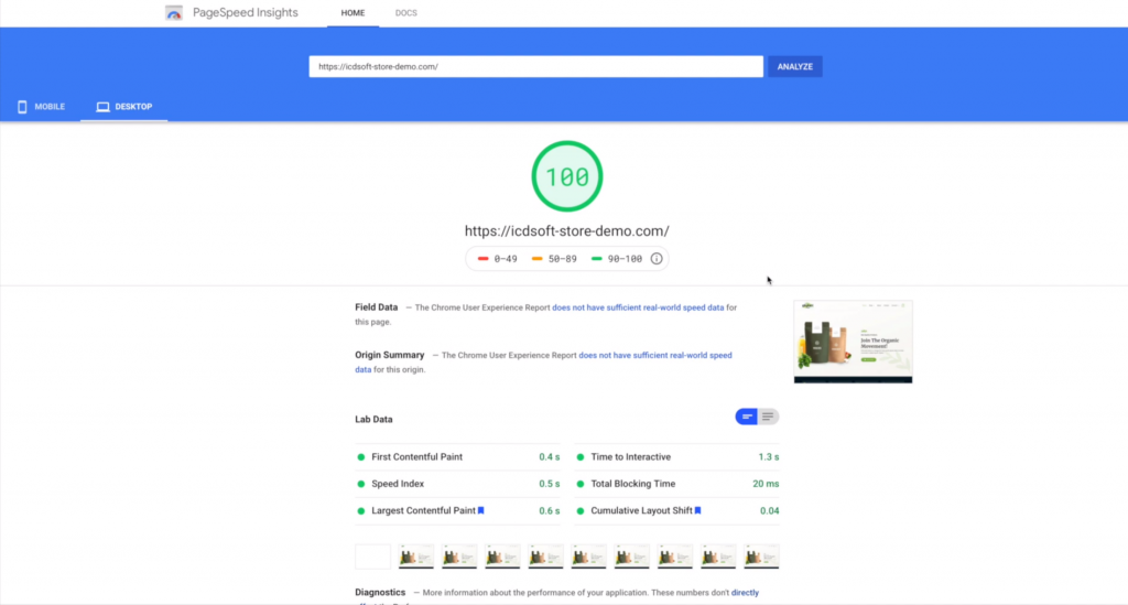 get 100 points on google psi